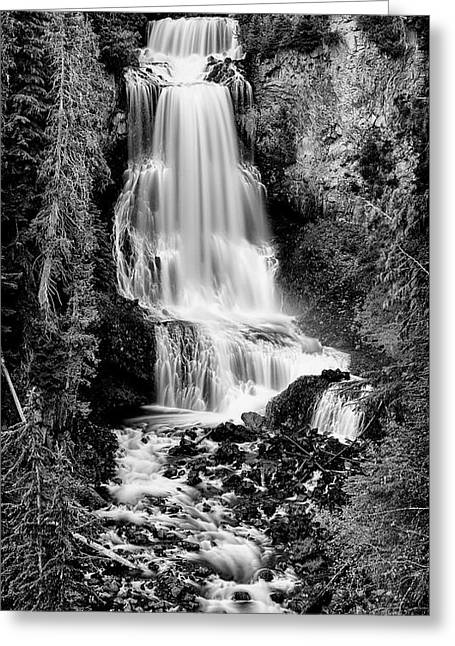 Greeting Card featuring the photograph Alexander Falls - Bw 2 by Stephen Stookey
