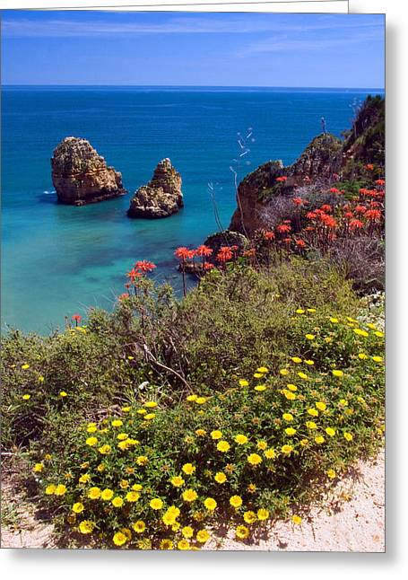Algarve Coast In Spring Greeting Card by John McKinlay