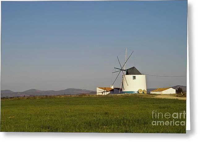 Algarve Windmill Greeting Card by Heiko Koehrer-Wagner