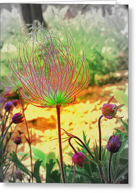 Alien In The Garden Greeting Card by Julie Lueders