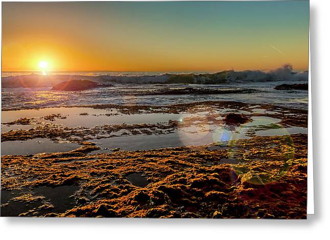 Aliso Point With Flare Greeting Card by Kelley King