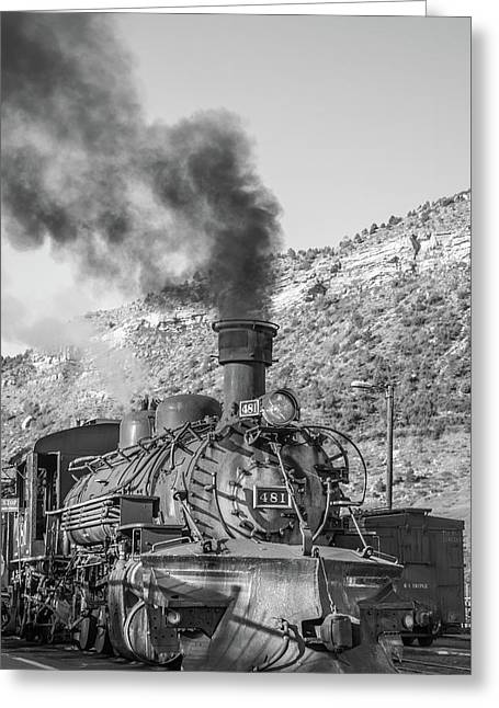 Greeting Card featuring the photograph All Aboard by Colleen Coccia