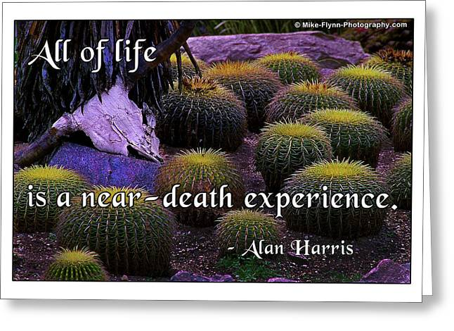All Life Greeting Card by Mike Flynn
