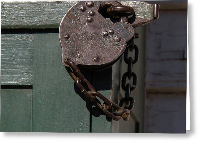 All Locked Up Greeting Card by Teresa Mucha
