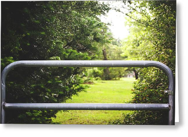 Greeting Card featuring the photograph All Things Green by Shelby Young
