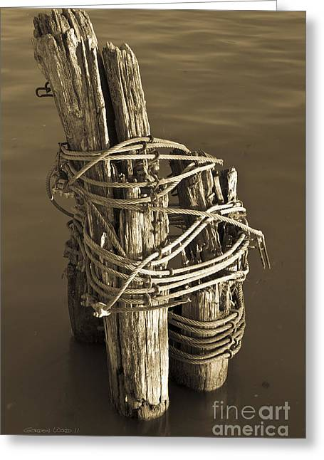 All Tied Up Greeting Card by Gordon Wood