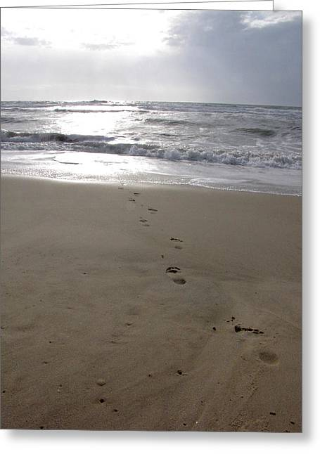 Greeting Card featuring the photograph Alle Vers L'ocean by Marc Philippe Joly