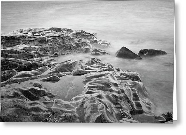 Greeting Card featuring the photograph Allens Pond Xviii Bw by David Gordon