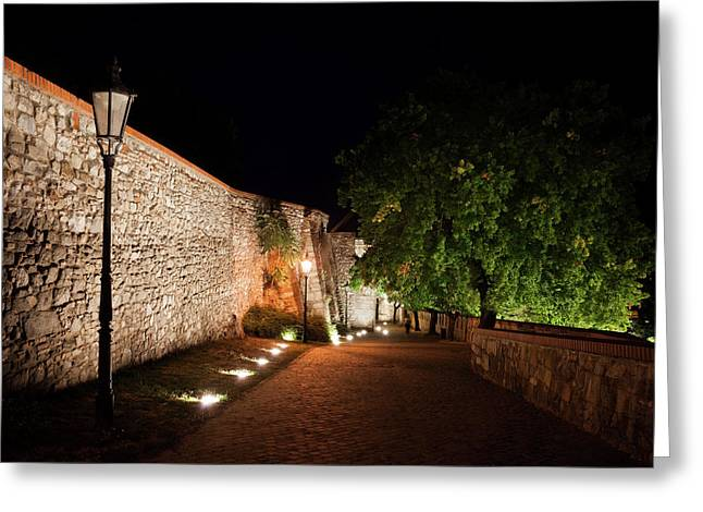 Alley Along Bratislava Castle At Night Greeting Card