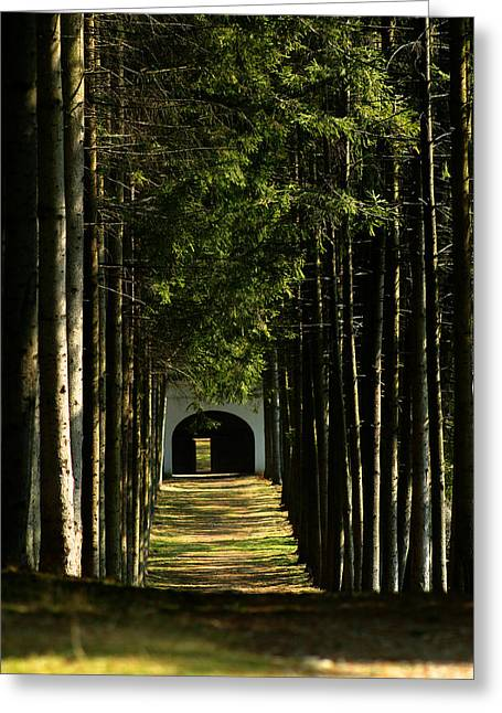 Alley At The Monastery Greeting Card
