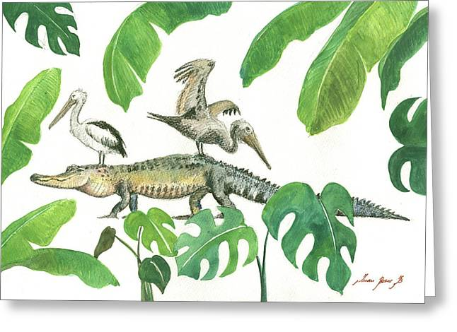 Alligator And Pelicans Greeting Card