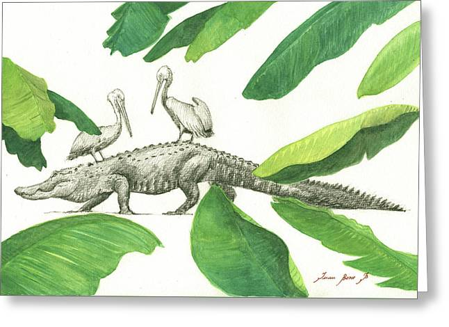 Alligator With Pelicans Greeting Card by Juan Bosco