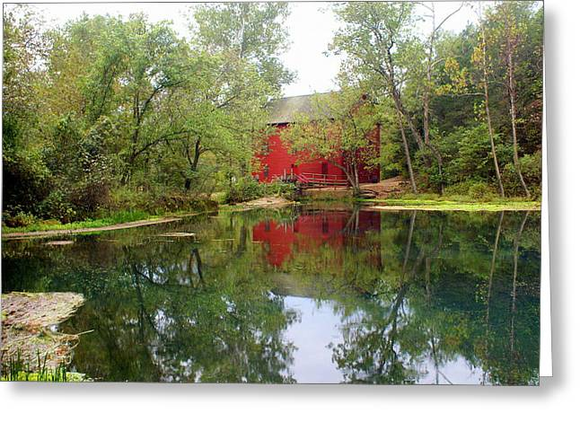 Allsy Sprng Mill Greeting Card by Marty Koch