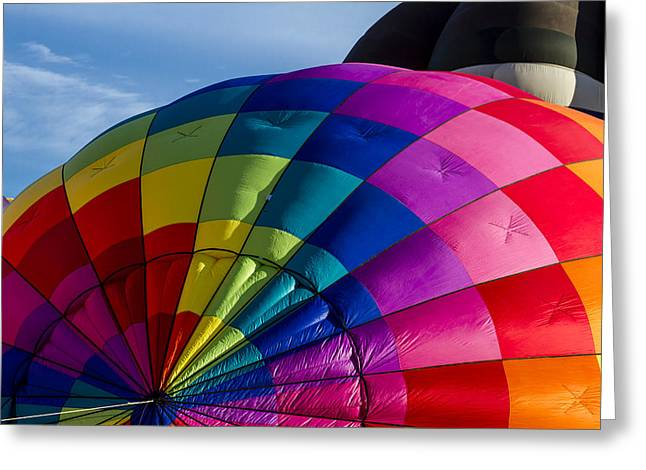 Almost Lift Off Greeting Card by Teri Virbickis