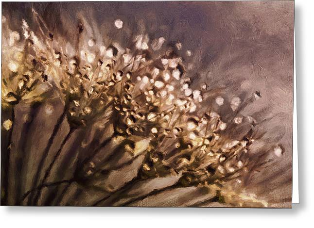 Almost Sepia Delicate Dandelions Greeting Card by Georgiana Romanovna