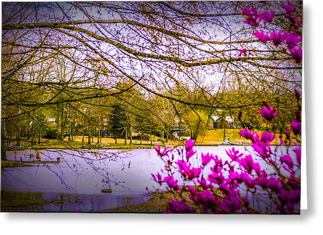 Almost Spring - Landscape Greeting Card by Barry Jones
