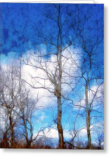 Almost Spring Greeting Card by Spyder Webb