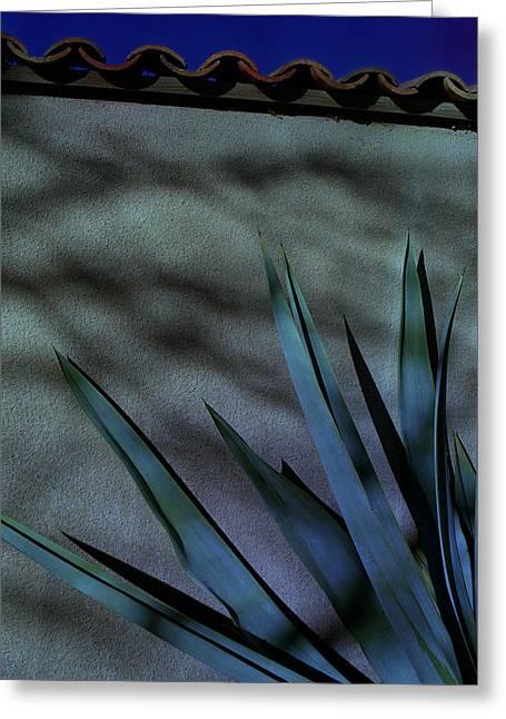 Aloe Cool Greeting Card
