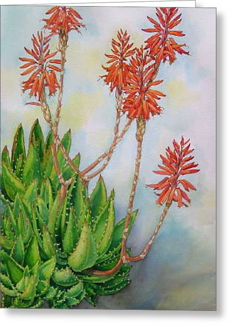 Aloe Nobiles Greeting Card by Elena Roche