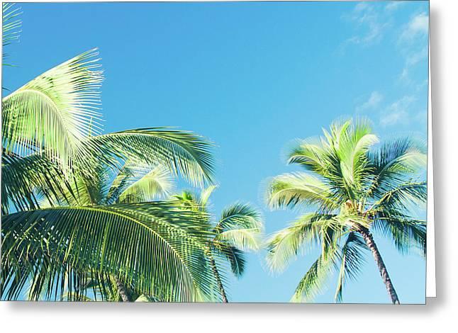 Aloha Hawaii Lahaina Palms Greeting Card by Sharon Mau