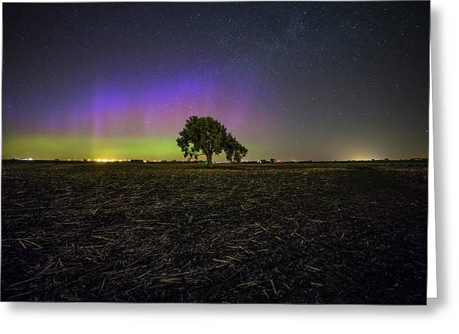 Alone Greeting Card by Aaron J Groen