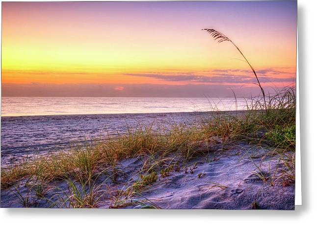 Greeting Card featuring the photograph Alone At Dawn by Debra and Dave Vanderlaan