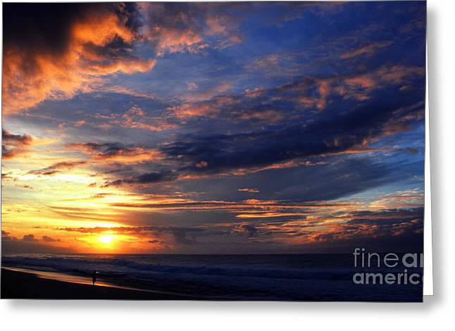 Alone At Sunset Greeting Card by Thomas R Fletcher