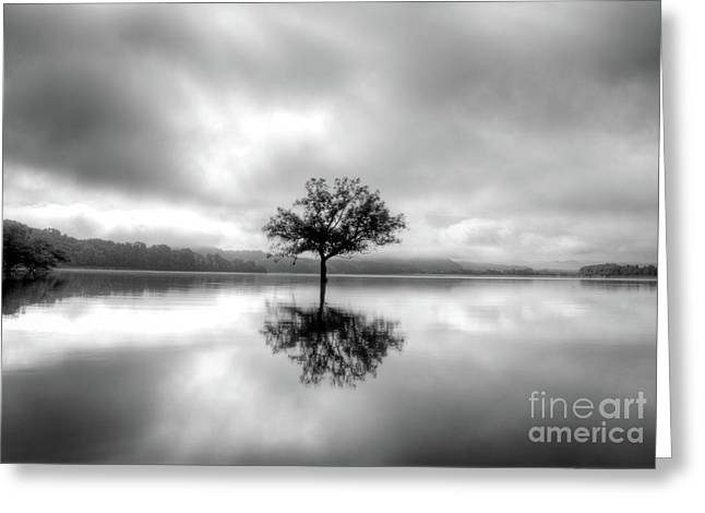 Alone Bw Greeting Card