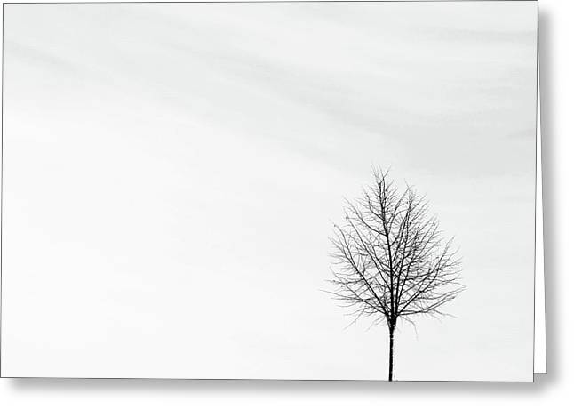 Alone In The Storm Greeting Card