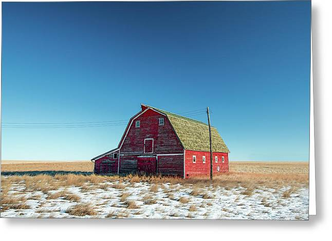 Alone In The Middle Greeting Card by Todd Klassy