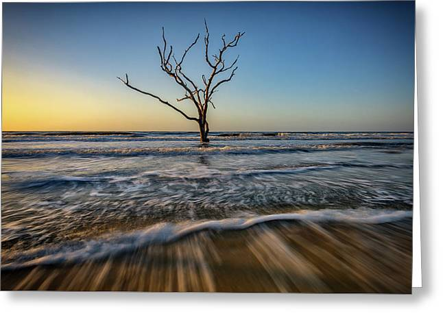 Greeting Card featuring the photograph Alone In The Water by Rick Berk