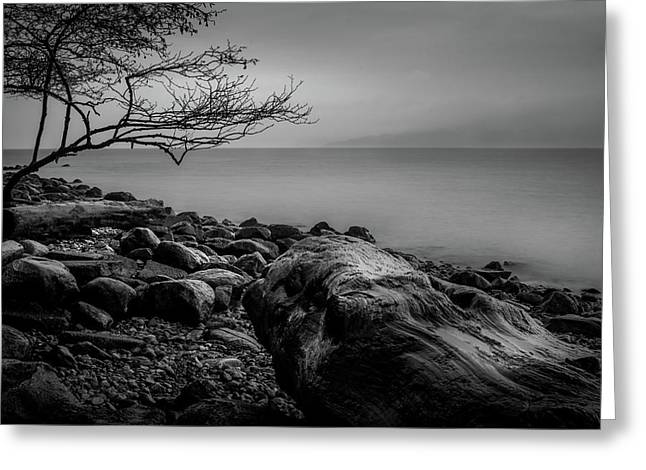 Alone On Spanish Banks Greeting Card