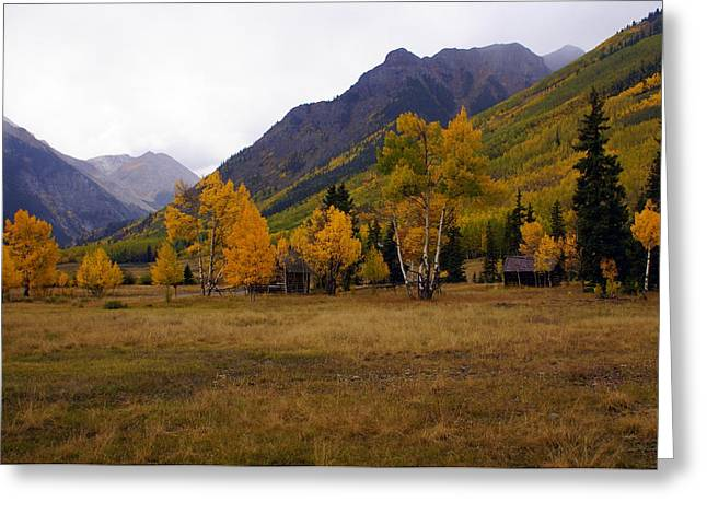 Along The Alpine Loop 2 Greeting Card by Marty Koch