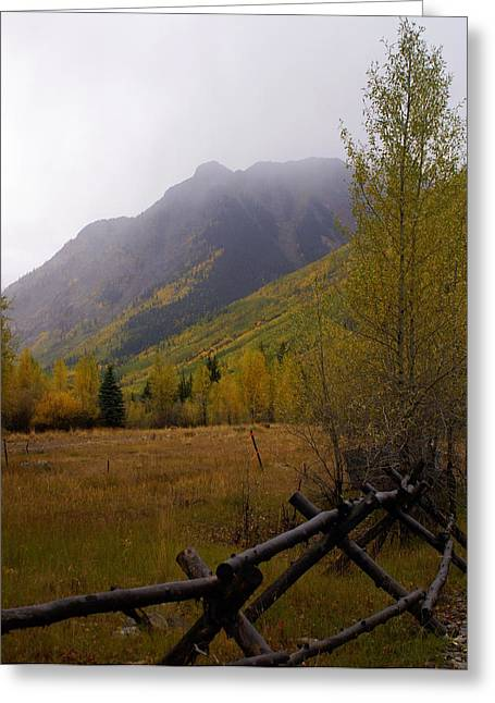 Along The Alpine Loop Greeting Card by Marty Koch