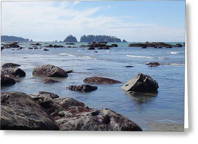 Along The Coast Of La Push Beach Greeting Card by Dan Sproul