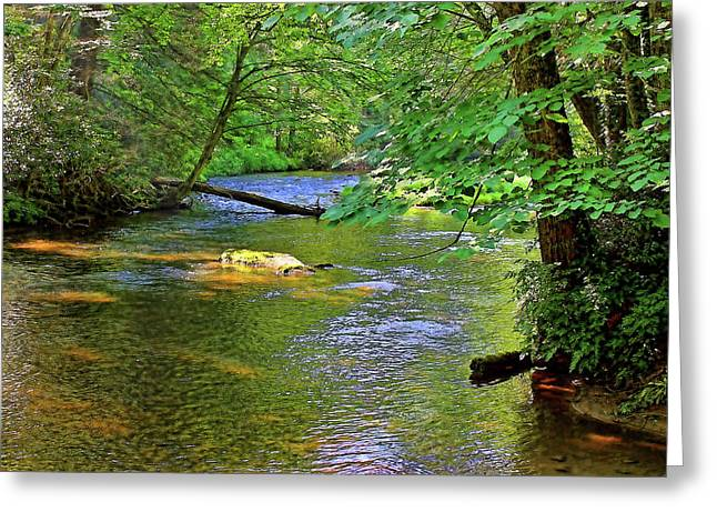 Along The Cullasaja River Greeting Card