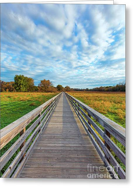 Along The Path Greeting Card by Andrew Slater
