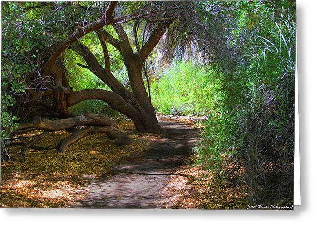 Along The Path Greeting Card