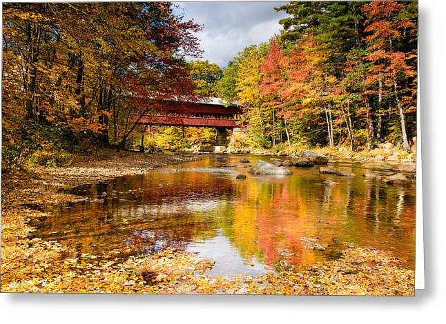 Along The Swift River Greeting Card