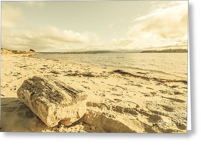 Alonnah Driftwood Greeting Card by Jorgo Photography - Wall Art Gallery