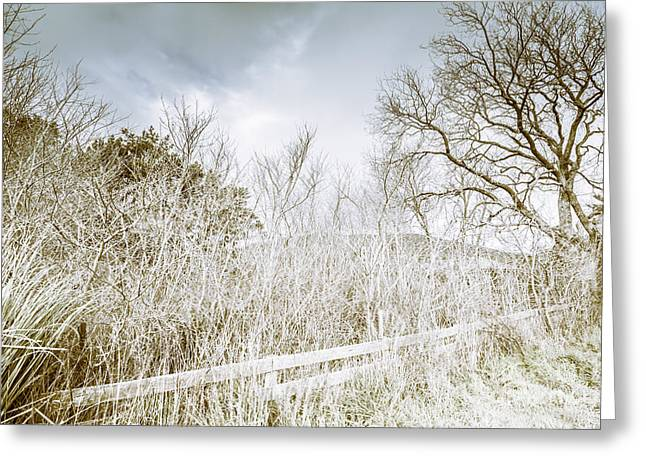 Alonnah Ice Landscape Greeting Card