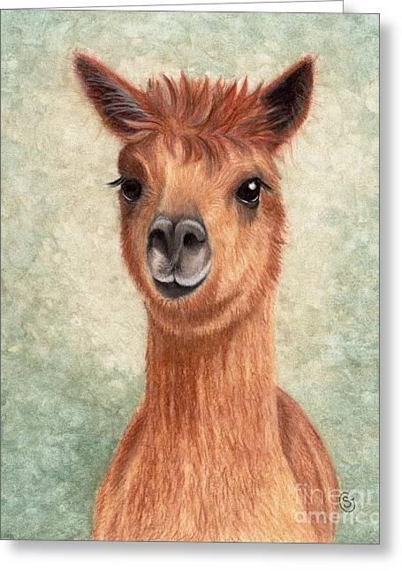 Alpaca - So Sweet Greeting Card by Sherry Goeben