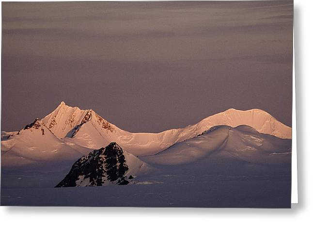 Alpine Glow - Antarctica Greeting Card