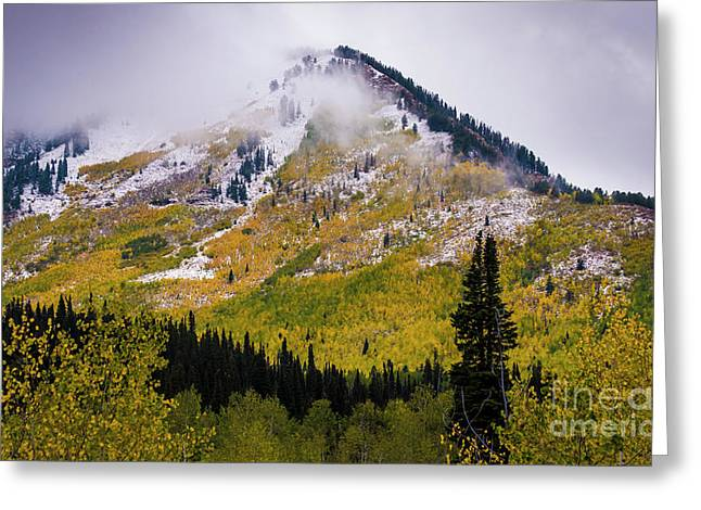 Greeting Card featuring the photograph Alpine Loop Autumn Storm - Wasatch Mountains  by Gary Whitton