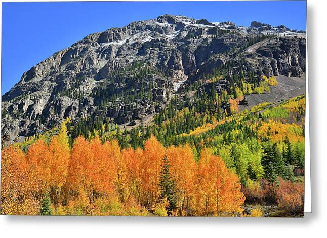 Greeting Card featuring the photograph Alpine Loop Road Aspens by Ray Mathis