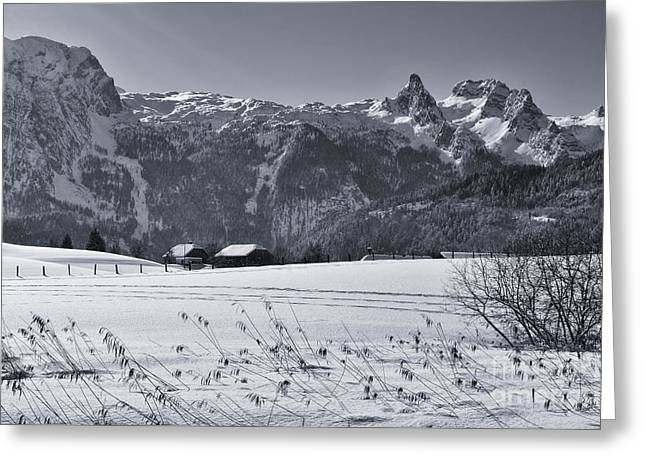 Alpine Mountain Range In Black And White Greeting Card by Sabine Jacobs