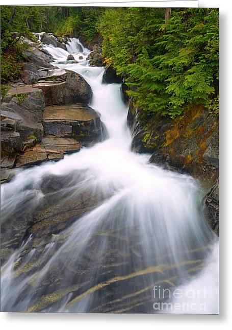 Alpine Rush Greeting Card