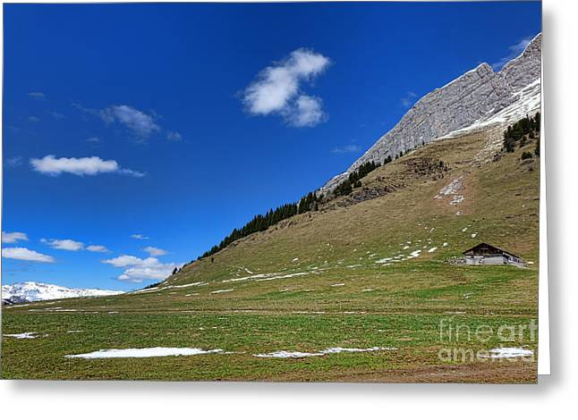 Alpine Spring Greeting Card by Olivier Le Queinec