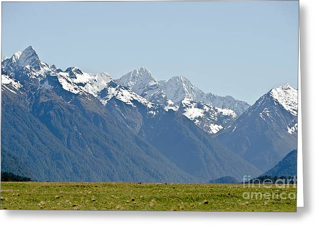 Alps And Valleys Of New Zealand. Lord  Of The Ring Scenery Greeting Card by Yurix Sardinelly