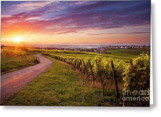 Alsace Dawn Greeting Card by Brian Jannsen